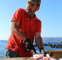 fisherman in Quintay