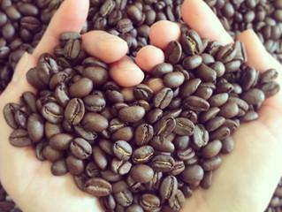 オーガニックコーヒーは美味しい?(1)
