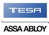 логотип теса.jpg