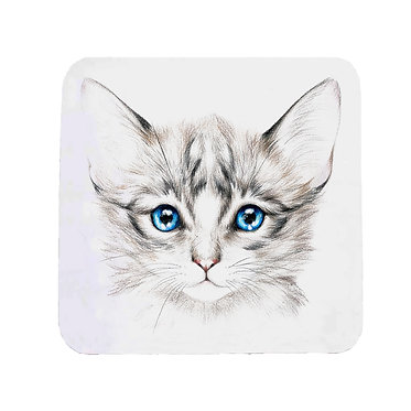 Neoprene drink coaster kitten with blue eyes image front view