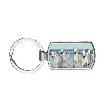 Rectangle metal key-ring white horses in water image front view