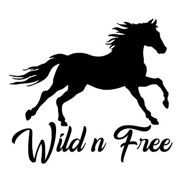 Horse vinyl decal sticker for horse float wild n free horse in black front view