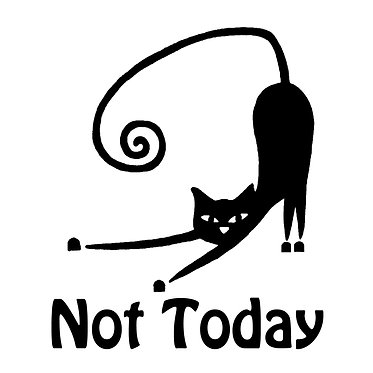 Cat vinyl decal sticker not today cat front view