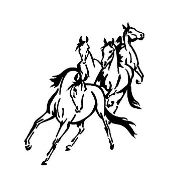 Horse Sticker Decal Front View