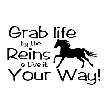 Horse vinyl decal sticker for horse float car grab life by the reins horse in black front view