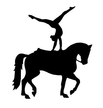 Horse and rider vaulting vinyl decal sticker in black front view