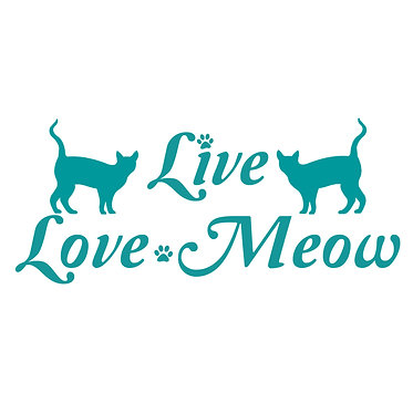 Cat vinyl decal sticker with quote live love meow in turquoise front view