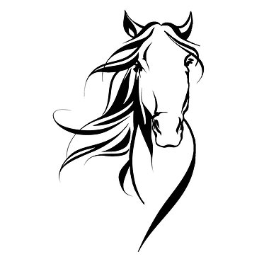 Horse head vinyl decal sticker in black for horse float front view