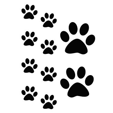 Cat vinyl decal sticker paw prints A4 size sheet black front view