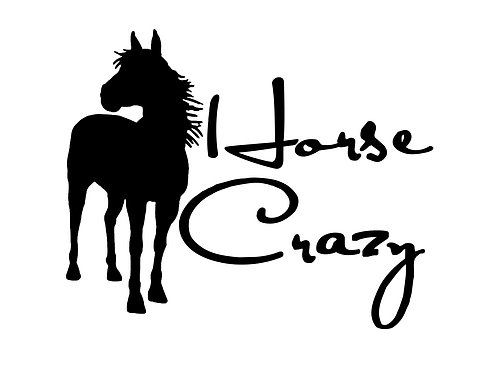 Horse decal sticker horse crazy front view
