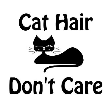 Cat vinyl decal sticker with quote cat hair don't care in black front view
