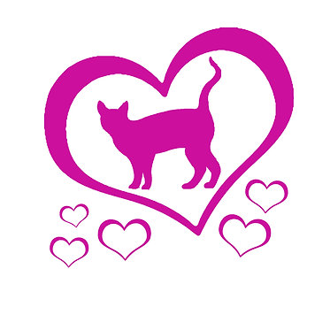 Cat vinyl decal sticker cat with hearts front view