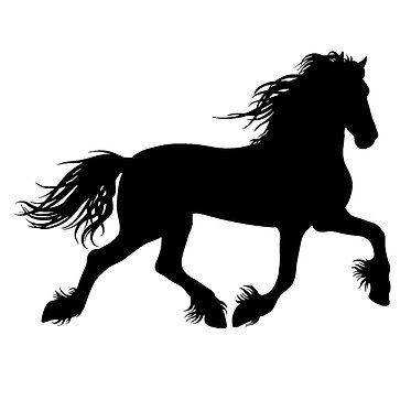 Horse vinyl decal sticker for horse float friesian horse in black front view