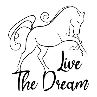 Horse vinyl decal sticker live the dream horse in black front view