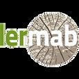 testLERMAB1.png