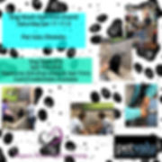 Dog Wash Jan 2020.jpg