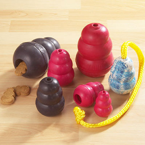 Donate A Kong Toy to the Rescue
