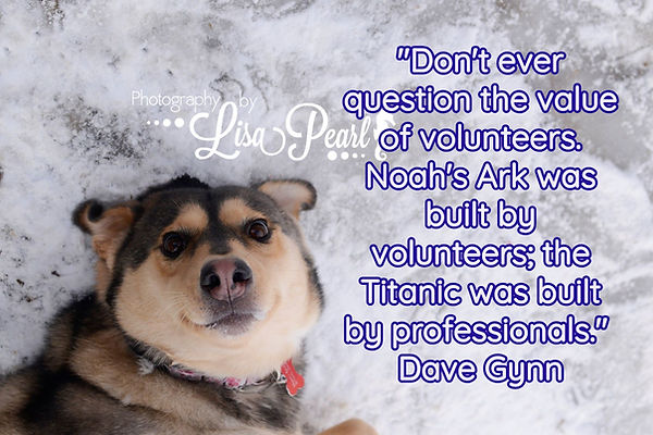 Dont question the value of volunteers.jp