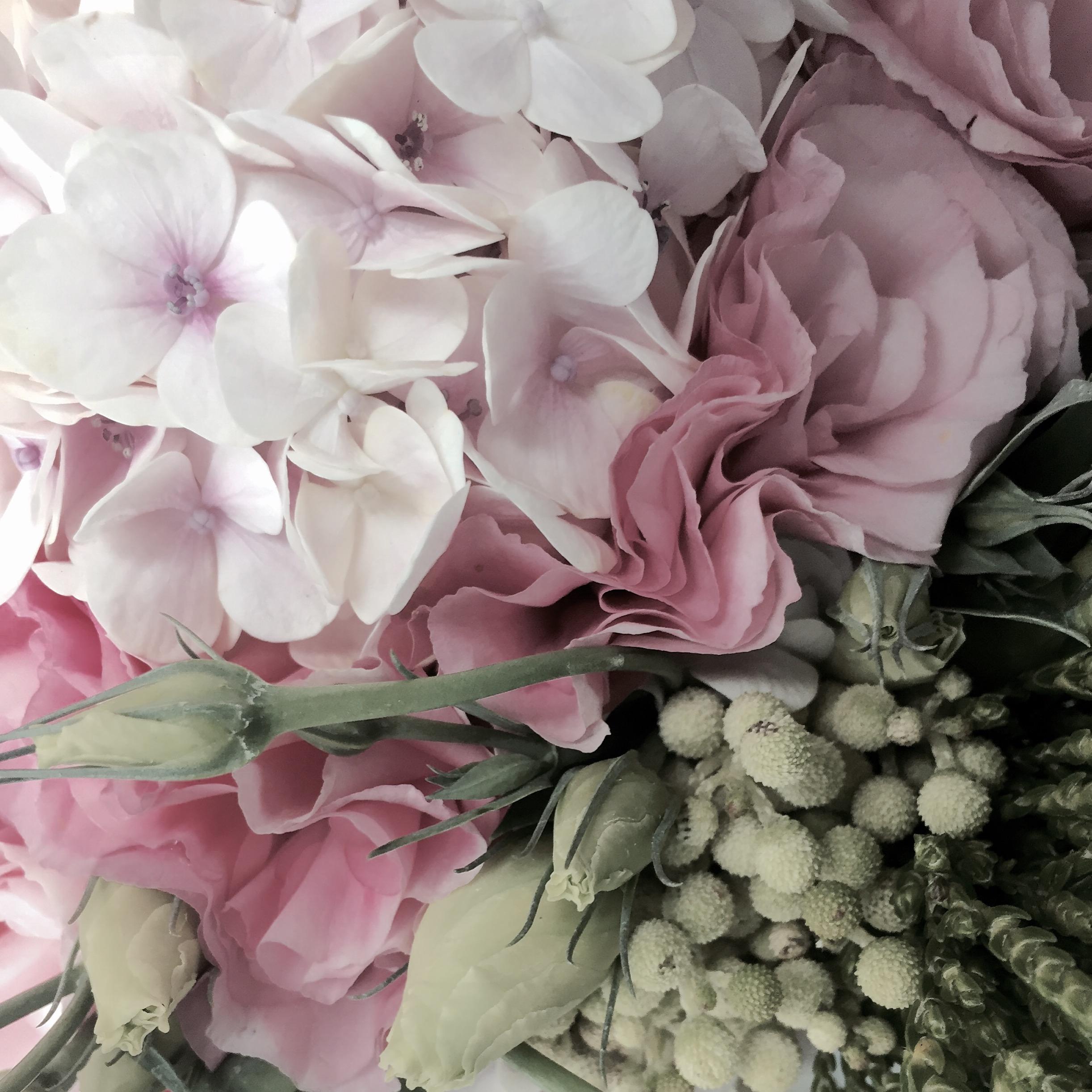 Dream Florist