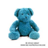 Blue Plush Toy Bear