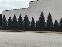 building trees.jpg