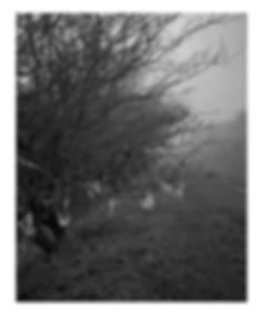 03 Web winter 9.jpg