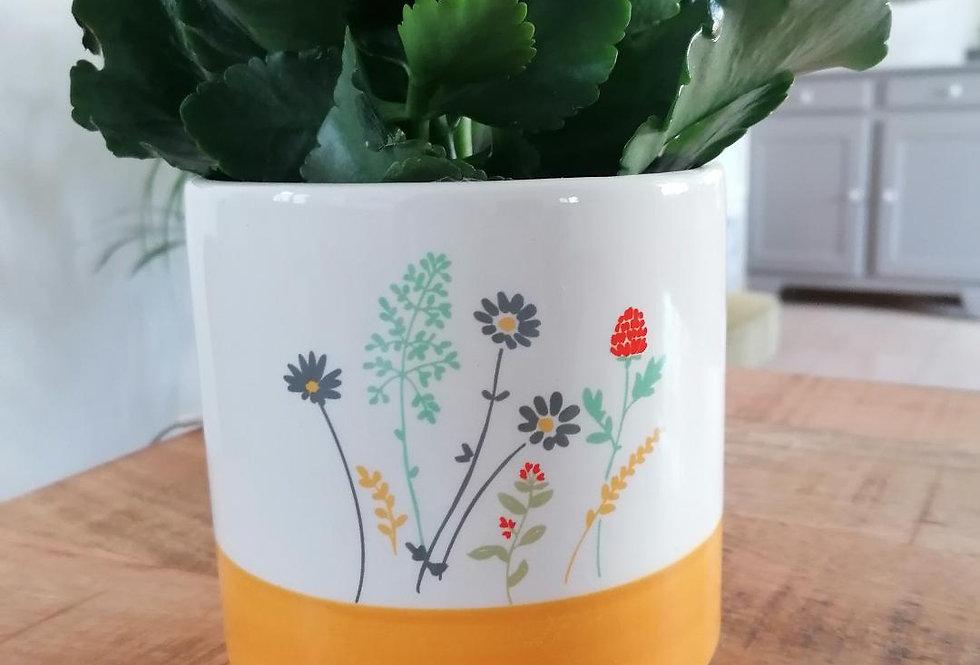 Cache-pot fleuri