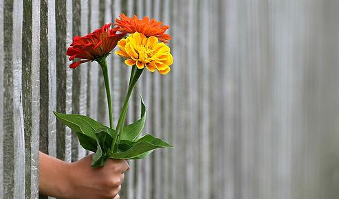 hand-1549399_1280.jpg