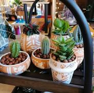 cache-pot-ceramique-plante-toutelamaison