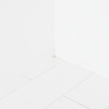 1. White records, 2018, Pigment print, 1