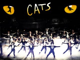 "Jellicle coisas para saber sobre ""Cats"""