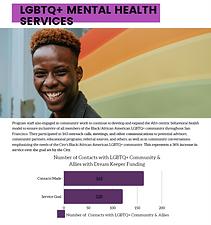 LGBTQ Services Contacts DKI Report 2021.png