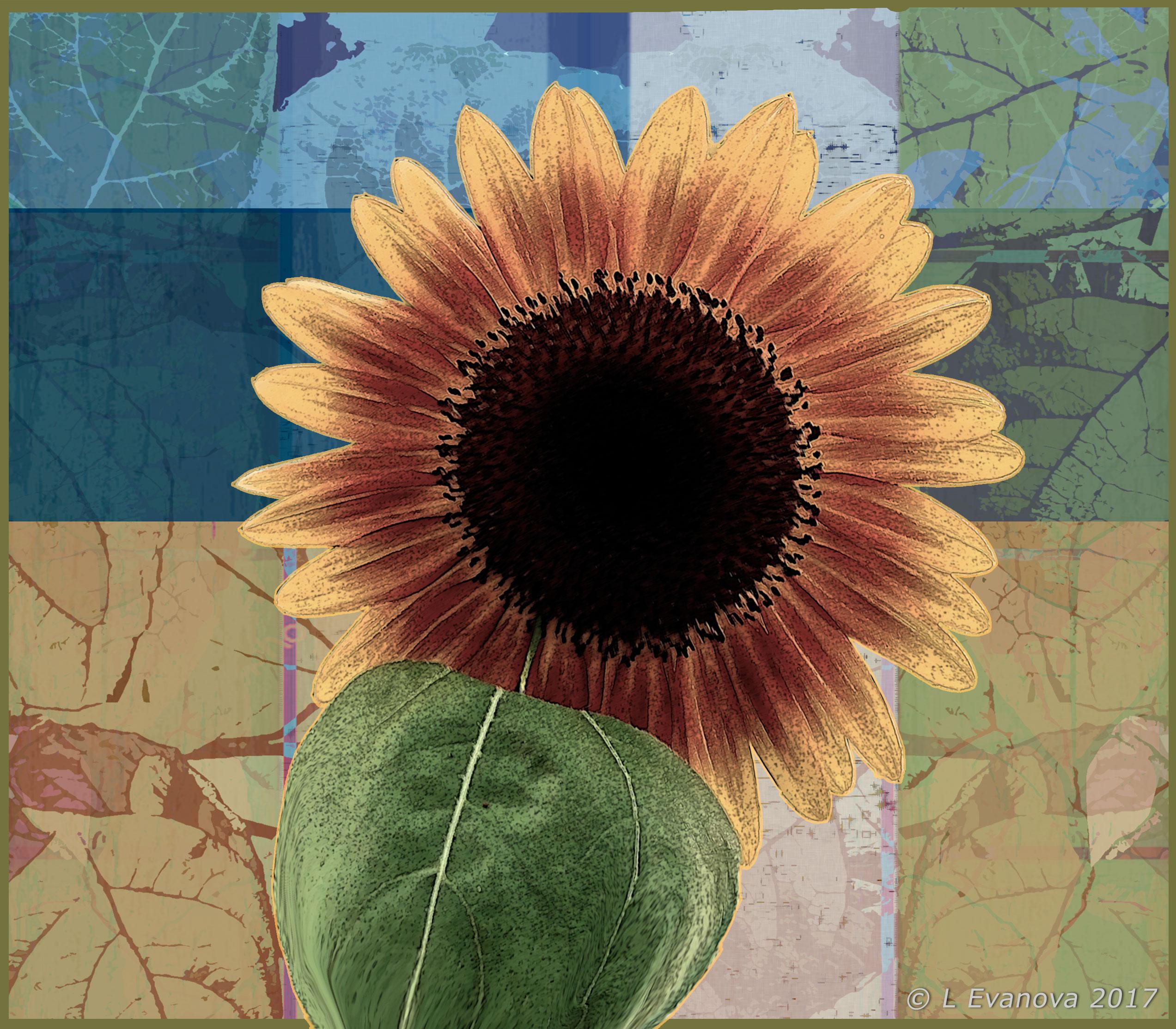 Sun-Flower-Post-2