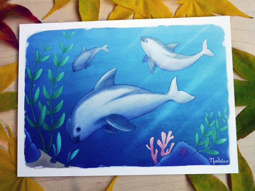 Vaquita Endangerment Awareness Print