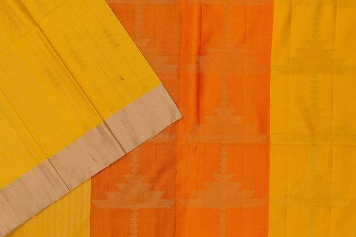 Sita mahalakshmi Raw silk saree PSSM05SMLAJE201126