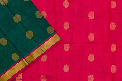 Silk cotton saree SS1979