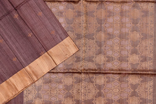Sita mahalakshmi Raw silk saree PSSM05SMLAJE201107