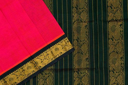 Amrith weaves creation silk Cotton saree PSAC090143