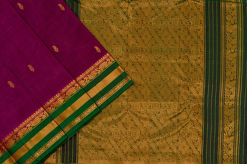 Amrith weaves creation silk cotton saree PSAC090240