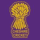 cheshire cricket.jpg