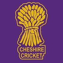 cheshire cricket.jpg