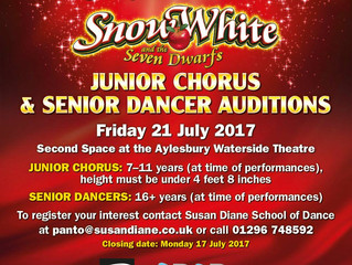 PANTOMIME AUDITIONS