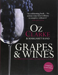 grapes and wines.jpg