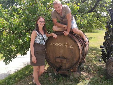 Winery visit - Vina Sosolič