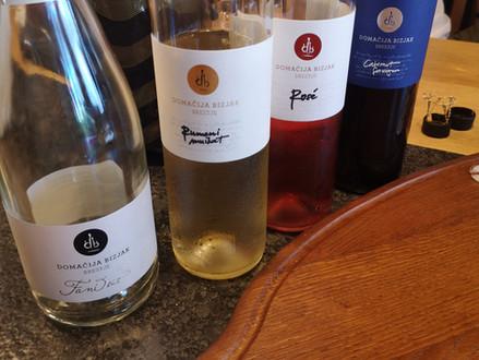 Winery visit - Domačija Bizjak