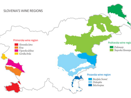 Get to know Slovenian wine - legal terms, behind the labels