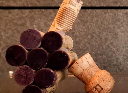 Get to know Slovenian wine - Red grape varieties