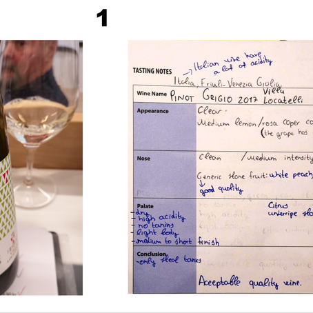 Wines and wine notes - WSET level 2