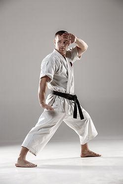 School of Martial Arts Doncaster East