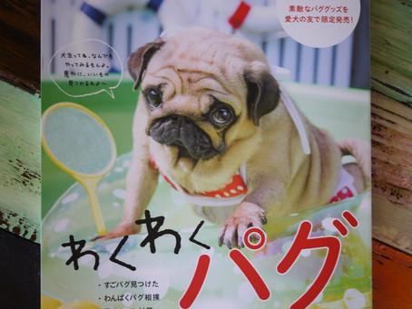 Pug & Peace ♪ ヽ(*´∀`)ノ